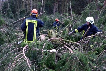 Feuerwehr beseitigt Bäume mit Motorsäge