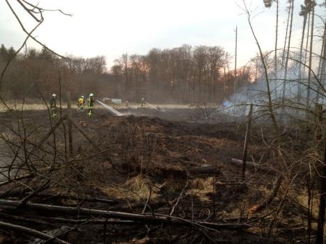 Waldbrand am 17.3.2012
