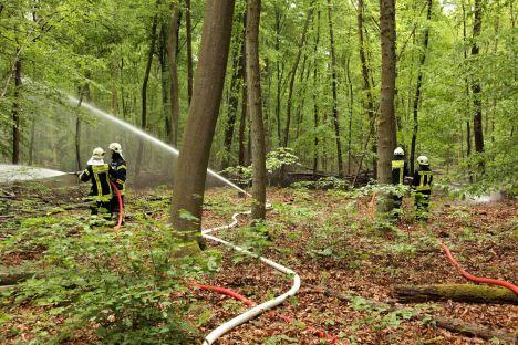 Wasserabgabe an der simulierten Brandstelle